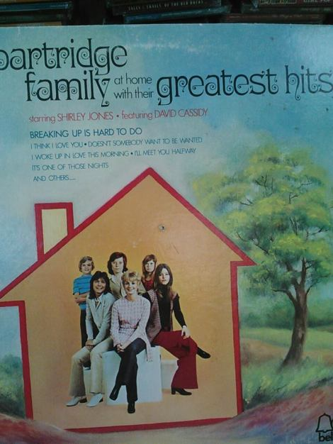 Partridge Family Greatest hits in the thrift shop sick!