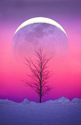 Winter Moon Rise